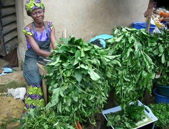Image result for vegetable seller in Nigeria