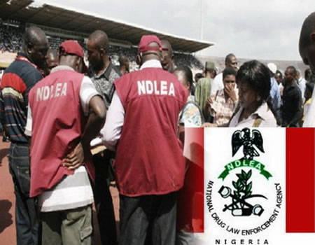 NDLEA nabs lady with multiple identities for trafficking 296,000 tabs of illicit drugs