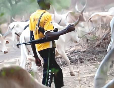 Suspected herdsmen invade farms, Ogoni Elders cry out, Suspected herdsmen kill man, Herdsmen allegedly abduct four, Suspected herdsmen kill five, Suspected herdmen kill three, Suspected herdsmen kill four , Four killed, Kogi Miyetti Allah chairman, Over 50 armed herdsmen, Suspected herdsmen machete , Miyetti Allah tells members, Suspected herdsmen hack two, Herdsmen storm forest reserve, Herdsmen attacks, herdsmen, Suspected herdsmen