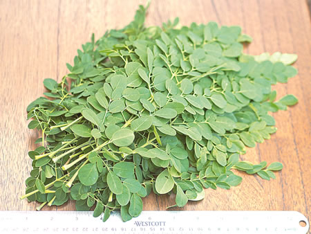 HERBS, stomach ulcer