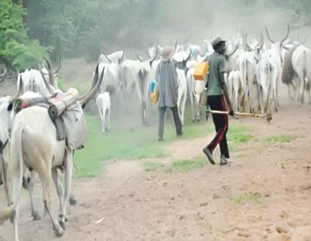 How three farmers were killed by suspected herdsmen in Ibadan