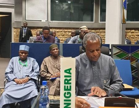 Nigeria, Libya, insecurity, Nigerians