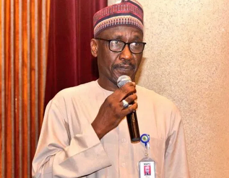 NNPC announces, Ajaokuta-Kaduna-Kano, gas pipeline project, industrial growth, Kyari, Infectious Disease Hospital, appointment, NNPC, COVID-19, passage of PIB