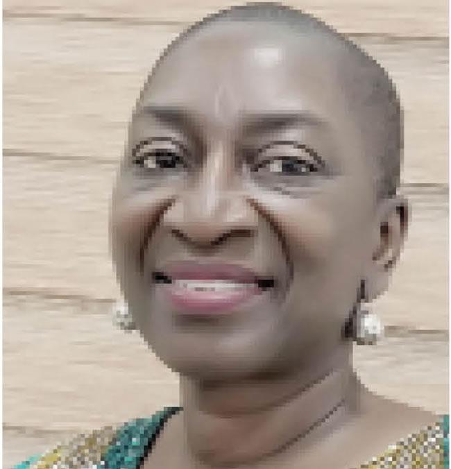 Putting me in same company with Mabogunje, Mazrui, Ade Ajayi is awesome —Prof. Oyewumi, 2021 Winner of Africanist Award