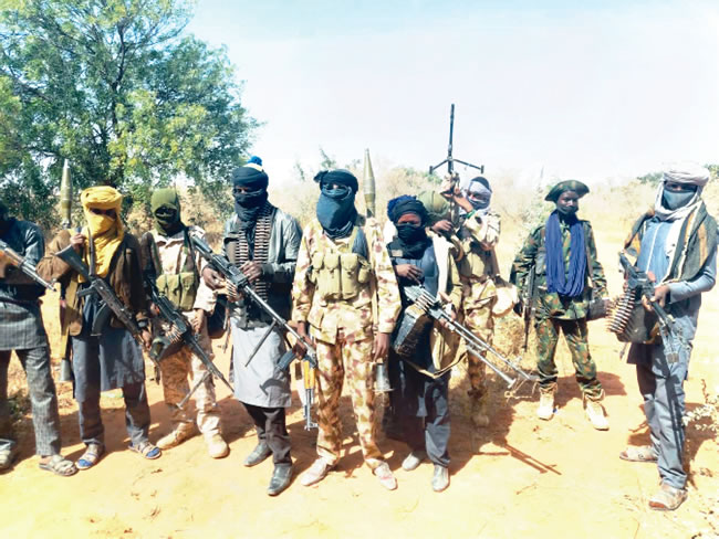 Banditry: Zamfara stakeholders worry over government's inaction on committee's report